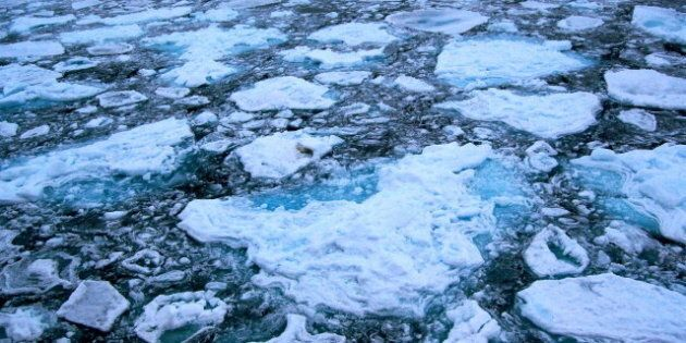 Category:Arctic sea ice. GFDL |