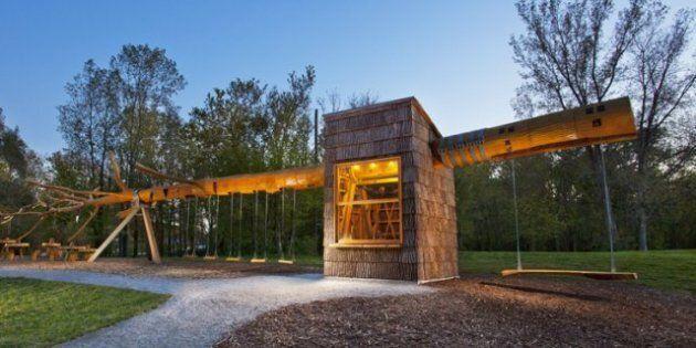 Aux États-Unis, un parc entièrement construit à partir d'un arbre