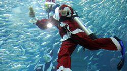 Le Père Noël... dans un aquarium