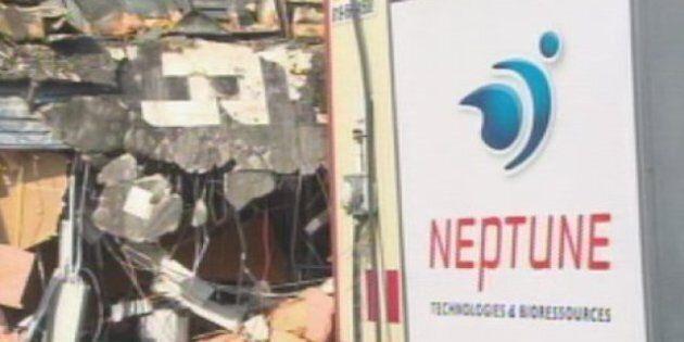 Neptune technologies : plusieurs manquements à la Loi sur