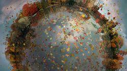 À VOIR! Des micro-planètes créées à partir de photos de paysages