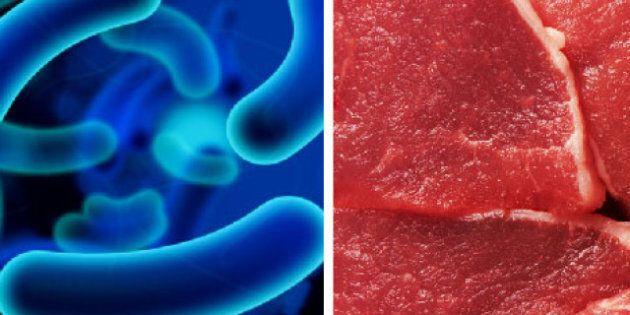 E.coli frappe encore: faut-il faire confiance à l'agence d'inspection des