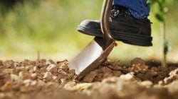 Tous avec vos pelles pour une première pelletée de terre!