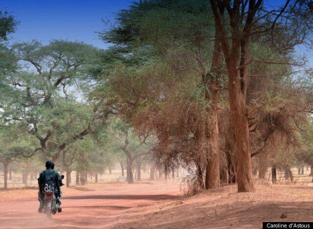 Du Québec en Afrique: l'appel de