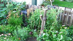 Montréalais, jardinez votre