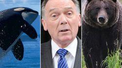 La loi sur les espèces en péril est-elle...