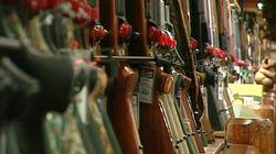 Registre des armes d'épaule : destruction des