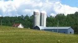Une usine de production d'engrais sera construite à Bécancour