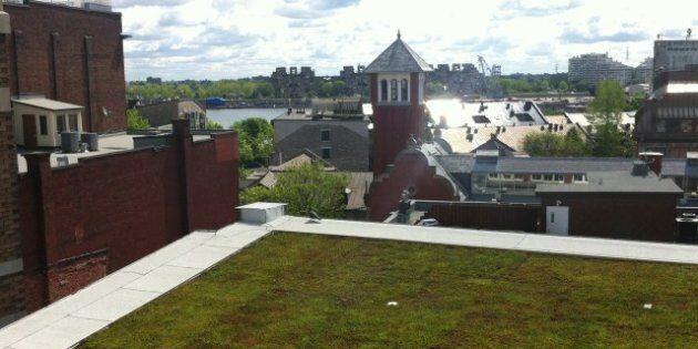 Le centre PHI à Montréal ouvrira ses portes le 1er juin 2012
