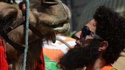 Photos: À dos de chameau sur la