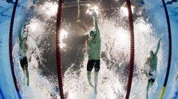 Les nageurs font-ils pipi dans les