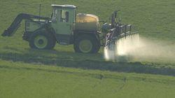 Un pesticide dangereux pour le développement cérébral des