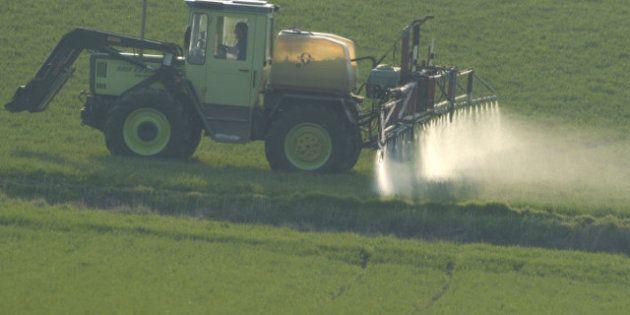 USA: un pesticide jugé dangereux pour le développement cérébral des