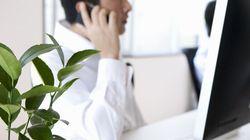 Une plante verte au bureau augmente la productivité de