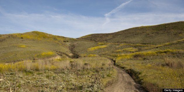 SAN JUAN CAPISTRANO - MARCH 27: A view of trail as it cuts through undeveloped land March 27, 2012 at...
