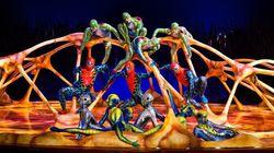 La Caisse de dépôt intéressée par le Cirque du