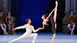 Le Lac des cygnes : un ballet au fin plumage