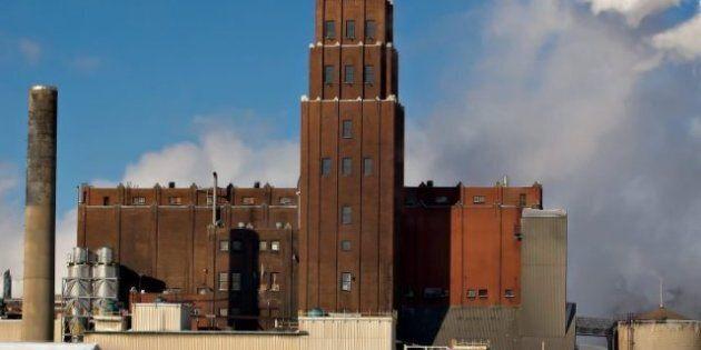 White Birch: les employés de l'usine Stadacona acceptent l'offre