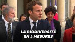 Macron veut porter à 30% les aires marines et terrestres