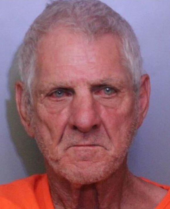 Gary Wayne Anderson, 68, is accused of crashing into an unoccupied police vehicle.