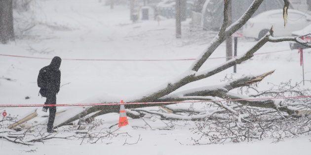 Des milliers de gens encore privés d'électricité, des écoles demeurent
