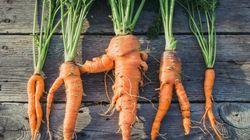 Plus de légumes moches en