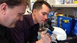 Des scientifiques à la recherche de fonds