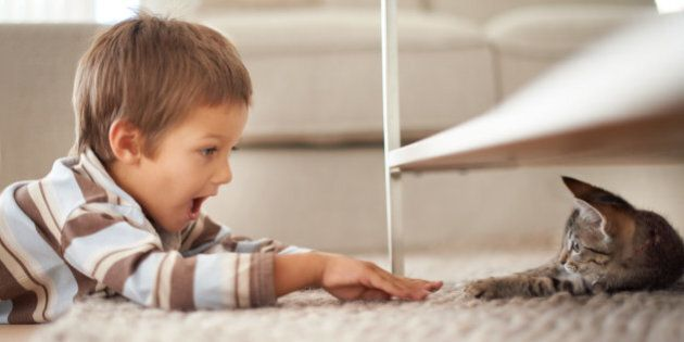 A little boy lying on his bedroom floor and playing with a kittenhttp://195.154.178.81/DATA/i_collage/pi/shoots/783344.jpg
