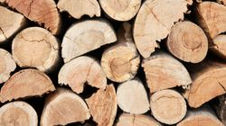 Les États-Unis trancheront sur les droits sur le bois d'oeuvre le 25