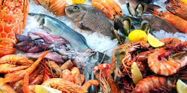 Variety of fresh seafood on