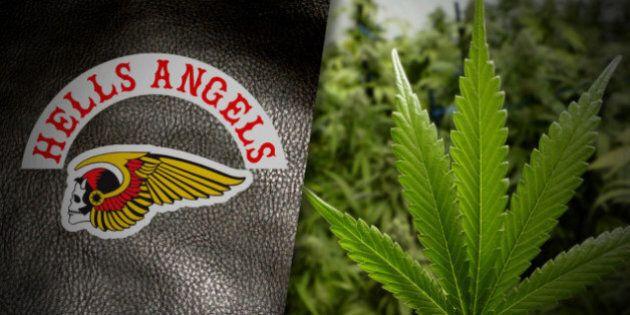 Des Hells Angels produisent de la marijuana médicinale légale depuis