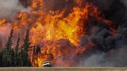 Plus d'incendies de forêt à venir au Québec, selon un