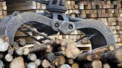 Le Canada veut inclure le bois d'oeuvre dans