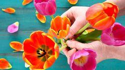 8 fleuristes coup de cœur pour gâter votre