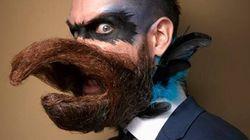 Il y a du très haut niveau dans ce concours de barbes