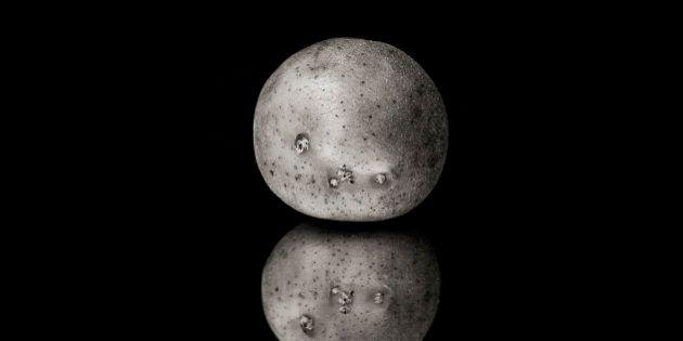 Potato reflection