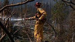 Retour sur 7 grands feux de forêt au Canada