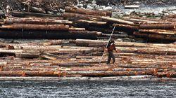 Bras de fer sur le bois d'oeuvre entre le Canada et les