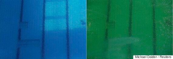 Rio 2016: l'eau de la piscine olympique est devenue verte et personne ne sait pourquoi