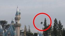 Dumbo en vrai, Disneyland l'a fait