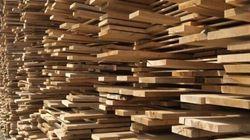 Taxe américaine sur le bois d'oeuvre: marche de