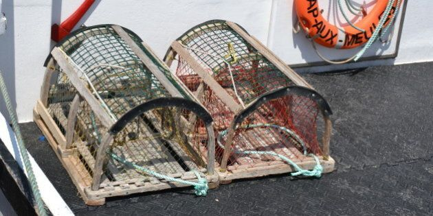La pêche aux homards une spécialité des îles de la