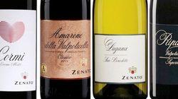 Les vins de la famille Zenato: l'Italie à votre