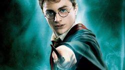 Une exposition marquera les 20 ans de Harry