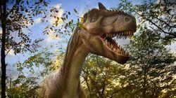 L'arbre généalogique des dinosaures remis en