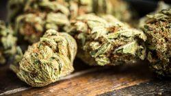 Quel serait le prix d'un gramme de cannabis