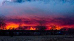 Peut-on attribuer les feux de forêt aux changements