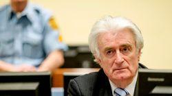 L'ex-leader des Serbes de Bosnie fait appel de sa