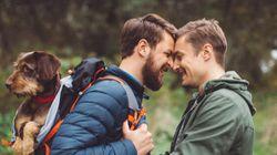 «Les homophobes sont-ils des enculés?» Ce recueil
