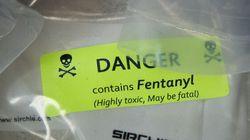 Quantité record de comprimés de fentanyl saisie à